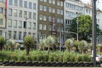 Palmen in der City by Marina von Ketteler