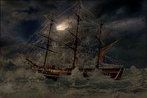 Der Untergang der Bounty by Marie Luise Strohmenger
