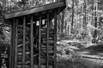 Wood stacked in a shed - monochrome von Intensivelight Panorama-Edition