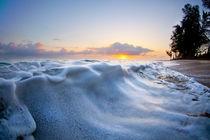 Marshmallow Tide von Sean Davey