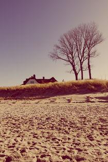 Haus in den Dünen von dresdner
