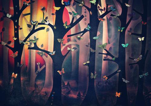 The-woods-at-sunset-c-sybillesterk