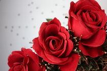 rote Rosen von Edeltraut K.  Schlichting