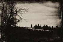 Cementerio a lo lejos by Laura Benavides Lara