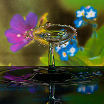 Glass flower by Ronny Tertnes