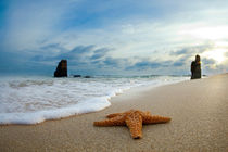 Starfish and monoliths by Sean Davey