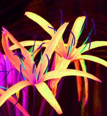 Fantasy Flowers 7 von Margaret Saheed
