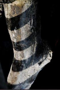 Holz-Schuh von Klaus Schäfer