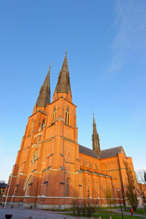 Uppsala Domkyrka (Uppsala Cathedral), Uppsala, Sweden. by David Hill