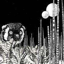 Lemurjunglecarre