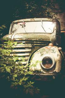 Rusty von pixelkoboldphotography