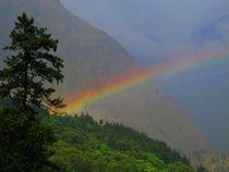 der Anfang des Regenbogens von reisemonster