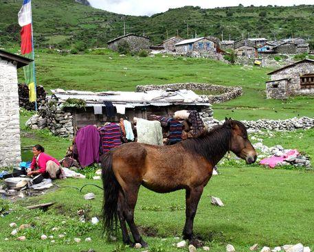 Nepal081