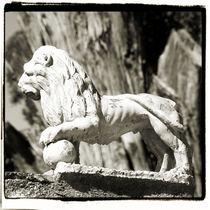 Alhambra Palace Lion by Brian Grady