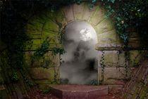 Moonlit Window von CHRISTINE LAKE