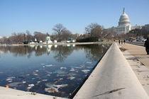 Washington Capitol von Mircea Nicolescu