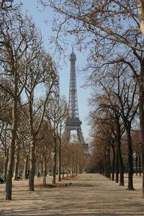 Eiffel tower von Mircea Nicolescu
