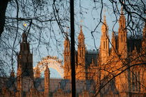 London Eye von Mircea Nicolescu