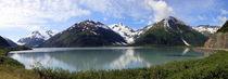 Whittier, Alaska von Mircea Nicolescu