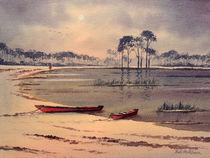 Kayaking In Florida von bill holkham