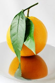 Orange fruit by dag