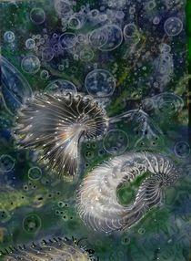 Unterwasserwelten von Heidi Schmitt-Lermann