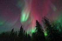 glowing skies von Priska  Wettstein