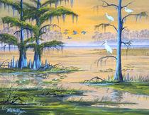 Ibis - Everglades Misty Sunrise by bill holkham