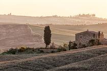 Tuscanevening