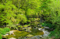 River Foorbridge, Exmoor von Craig Joiner
