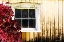 Old White Window von Martin Dzurjanik