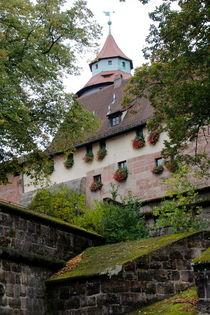 Nuremberg castle von Mircea Nicolescu