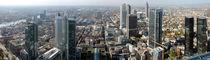 Frankfurt panorama von Mircea Nicolescu