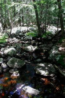 Small river von Mircea Nicolescu