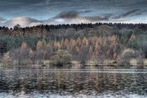 Steam Mills Lake by David Tinsley