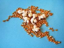 Amerika: Nordamerika, Kontinent, Puffmais, fun.America: North America, continent, popcorn von Dagmar Laimgruber