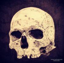 Realistic Skull Drawing von Julien Höll