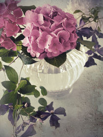 Hortensien & Clematis romantisch von hannahw