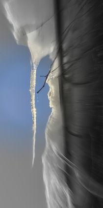 Eiswesen von alana