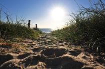 Spuren am Strand von Olaf von Lieres