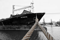 Im Hafen by Olaf von Lieres