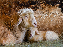 Easter lamb by Leopold Brix