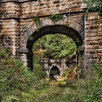 Mierystock Bridge and Tunnel von David Tinsley
