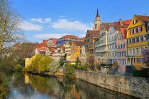 Die idyllische Neckarfront in Tübingen von Matthias Hauser