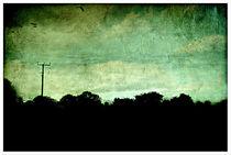Norfolk Scenery von rosanna zavanaiu