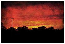 Firery Sunset. von rosanna zavanaiu