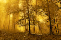 Golden forest at autumn  by Odon Czintos