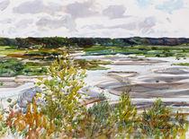Copper River Flats by Robert Halliday