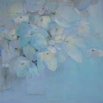 Hortensie by Stefanie Ihlefeldt