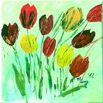 Tulpen12 von mariso